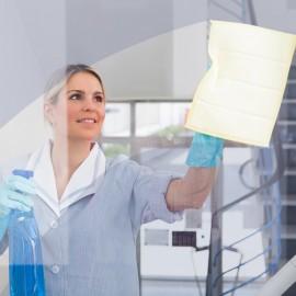 Nettoyage a domicile